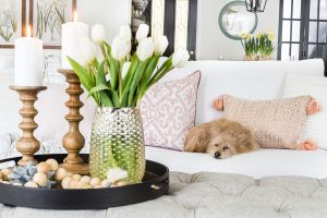 Adding spring to your home