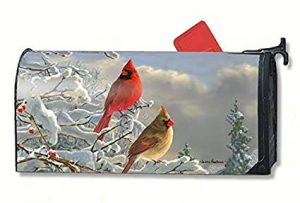 Seasonal mailbox cover